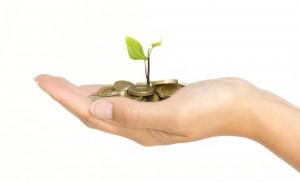 investing-in-lisa